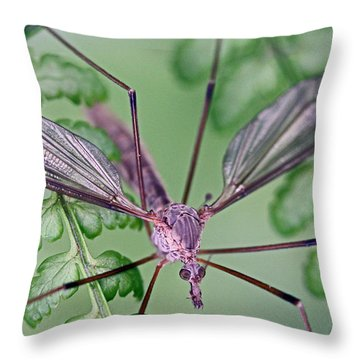 Ghost On A Fern Throw Pillow