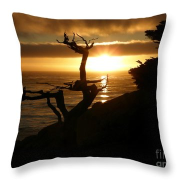 Ghost Tree At Sunset Throw Pillow
