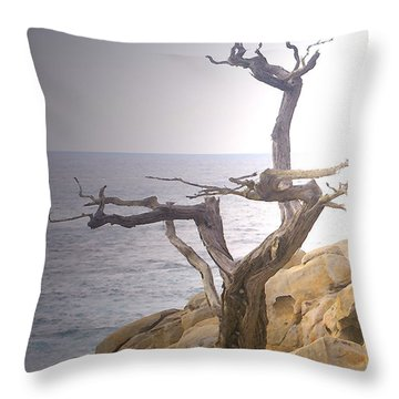 Ghost Tree Detail Throw Pillow by Barbara Snyder