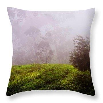 Ghost Tree In The Haunted Forest. Nuwara Eliya. Sri Lanka Throw Pillow by Jenny Rainbow