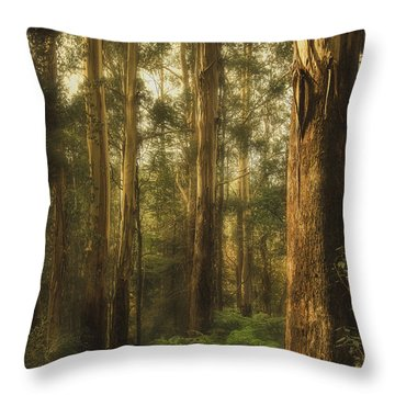 Ghostly Throw Pillow by Andrew Paranavitana