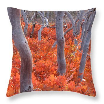Ghosts Of Seasons Past Throw Pillow by Feva  Fotos