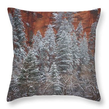Ghosts Of Winter Throw Pillow by Peter Coskun