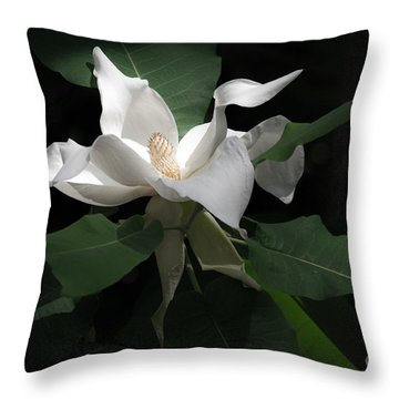 Giant Magnolia Throw Pillow