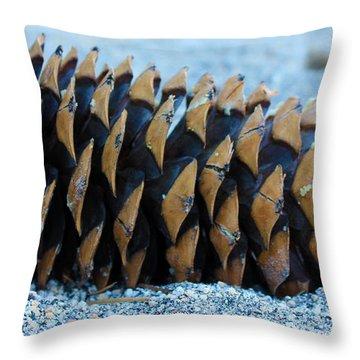 Giant Pinecone Throw Pillow