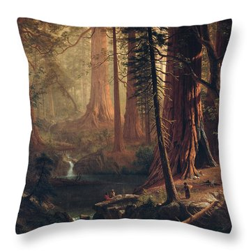 Giant Redwood Trees Of California Throw Pillow