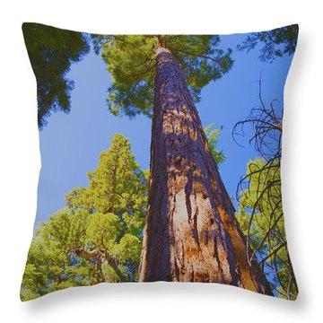 Giant Sequoia Throw Pillow