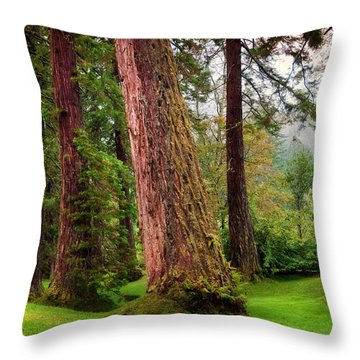 Giant Sequoias. Benmore Botanical Garden. Scotland Throw Pillow by Jenny Rainbow