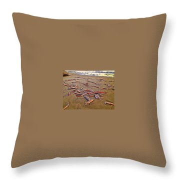 Throw Pillow featuring the photograph Giant Squid Capitola Beach by Antonia Citrino