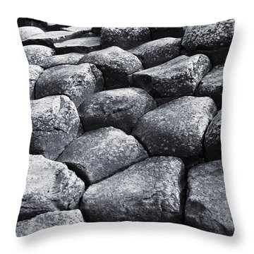 Throw Pillow featuring the photograph Giant Steps by Jane McIlroy