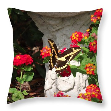 Throw Pillow featuring the photograph Giant Swallowtail On Lantana by Jayne Wilson