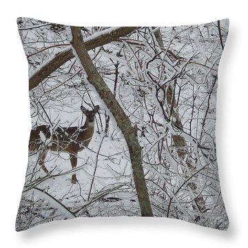 Gift In The Woods Throw Pillow