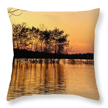 Gilded Sunset Throw Pillow by Julie Andel