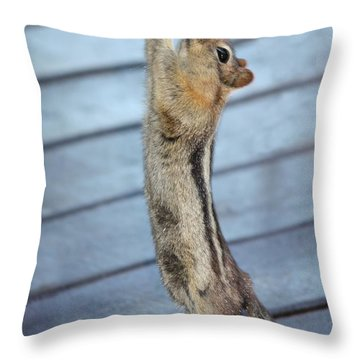 Gim-me-gim-me-gim-me Throw Pillow