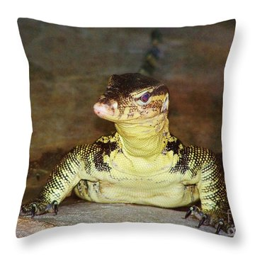 Throw Pillow featuring the photograph Gimme Some Lizard Love by Brigitte Emme