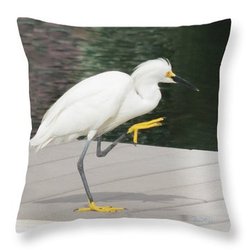 Gimmie Five Errr Four Throw Pillow