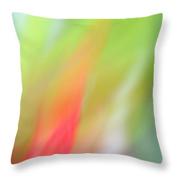 Ginger Flower Abstract 2 Throw Pillow