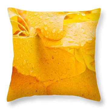 Throw Pillow featuring the photograph Ginkgo Biloba Leaves by Vizual Studio