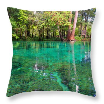 Ginnie Spring Along The Santa Fe Throw Pillow