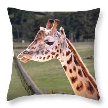 Giraffe 02 Throw Pillow
