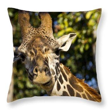 Giraffe 1 Throw Pillow