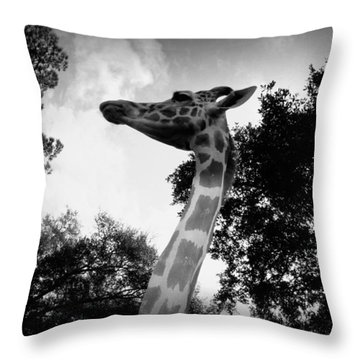 Giraffe Bw - Global Wildlife Center Throw Pillow