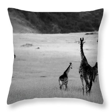 Giraffe In Black And White Throw Pillow by Sebastian Musial