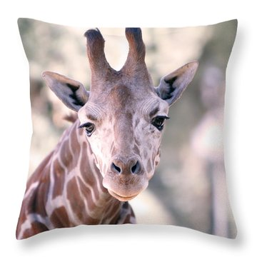 Throw Pillow featuring the pyrography Giraffe Staring  by Shoal Hollingsworth