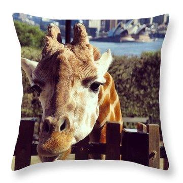 Giraffe Raspberry Throw Pillow