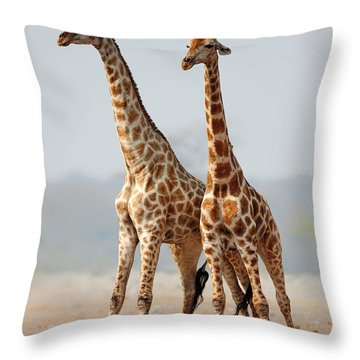 Giraffes Standing Together Throw Pillow by Johan Swanepoel