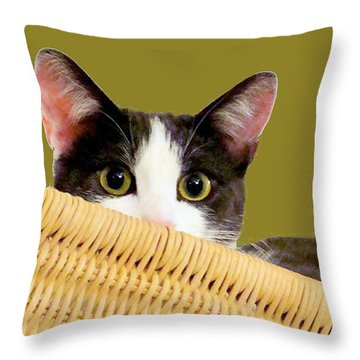 Throw Pillow featuring the photograph Girlie Cat  by Janette Boyd