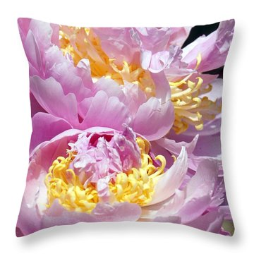 Throw Pillow featuring the photograph Girly Girls by Lilliana Mendez