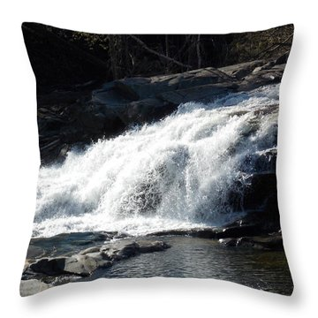 Glacial Potholes Falls Throw Pillow by Catherine Gagne
