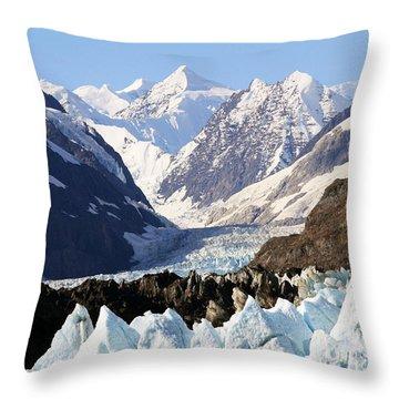 Throw Pillow featuring the photograph Glacier Bay Alaska by Sonya Lang