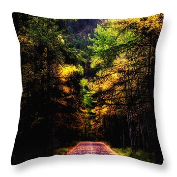Glacier Fall Road Throw Pillow by Susan Kinney