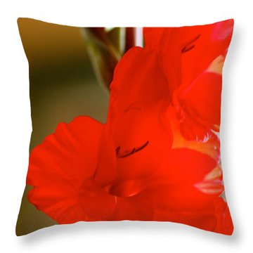 Glad Of Light Throw Pillow by Cathy Dee Janes