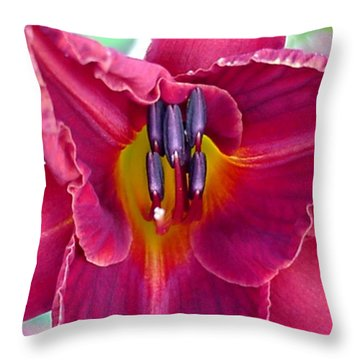 Glad Tidings Throw Pillow by Robbie L Rogers