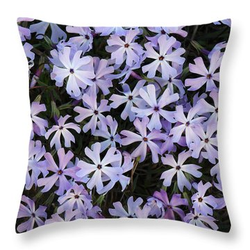 Glade Phlox Throw Pillow by Daniel Reed