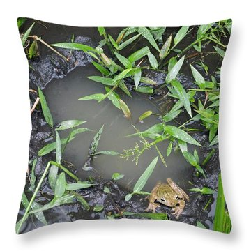 Hyla Throw Pillows