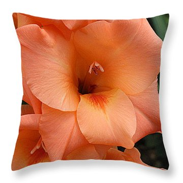 Gladiola In Peach Throw Pillow