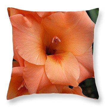 Gladiola In Peach Throw Pillow