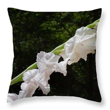 Gladiolas In The Rain Throw Pillow
