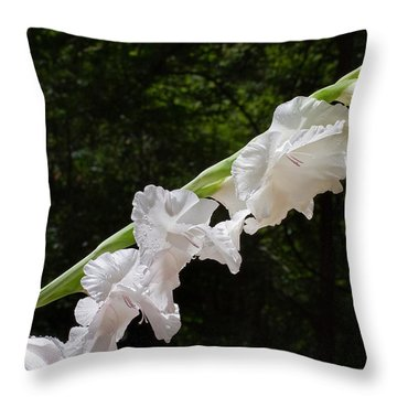 Gladiolas In The Rain Throw Pillow by Farol Tomson