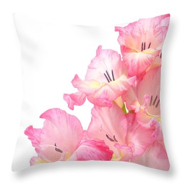 Gladiolus Throw Pillow by Olivier Le Queinec