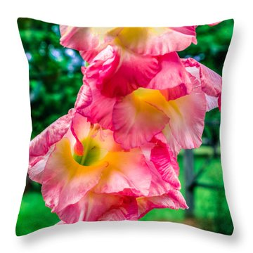 Throw Pillow featuring the photograph Gladiolus by Rob Sellers