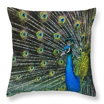 Glamour Throw Pillow by Andrew Paranavitana