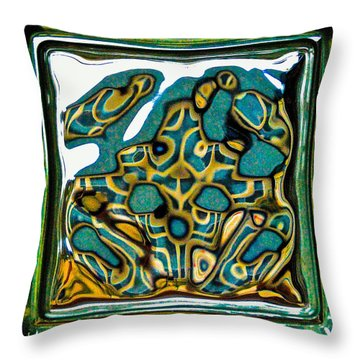 Glass Block Abstract 3 Throw Pillow