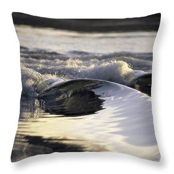 Glass Bowls Throw Pillow by Sean Davey