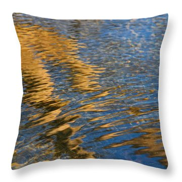 Glencairn Garden 010 Throw Pillow by Andy Lawless