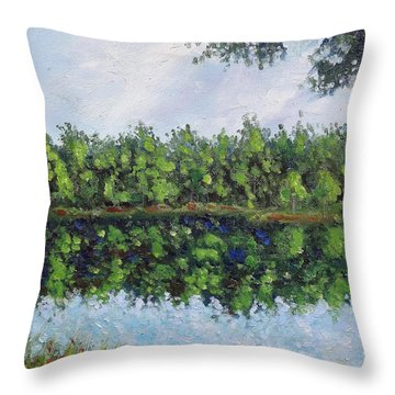 Glenoak Lake Throw Pillow by Jason Williamson